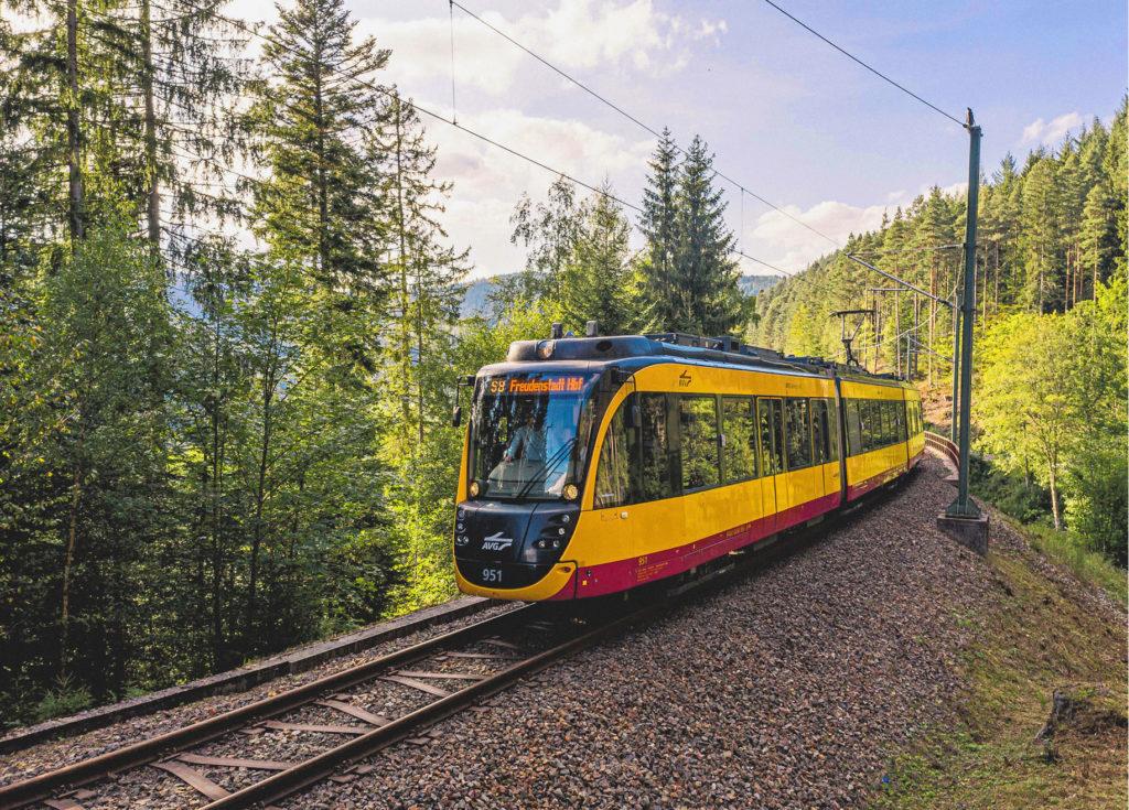 gelber Zug auf freier Waldstrecke - S4 Freudenstadt